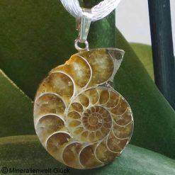 Ammonit, Anhänger, Edelsteine