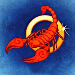 Sternzeichen Skorpion 24.10 - 22.11